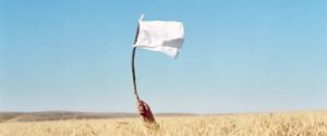 whitteflag